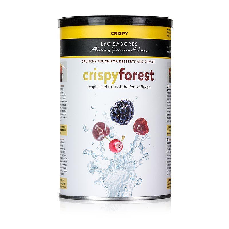 Lyo-Sabores, Ropogós erdő, erdei gyümölcsízű pelyhek 300 g